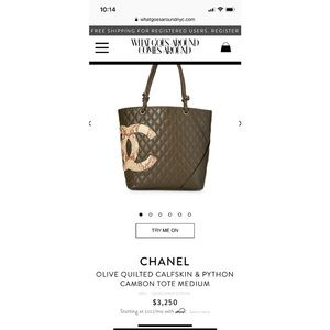 Super rare Chanel python cambon tote